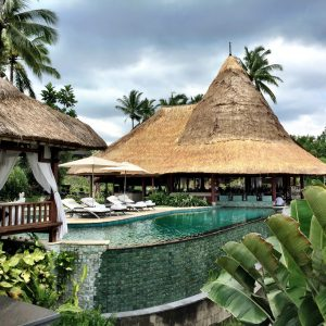 travel, bali, ubud, indonesia, rice fields, monkeys, magical trip, restaurants, hotels
