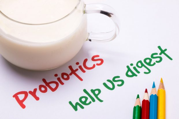 probiotic, probiotics, gut flora, health, digestion, kimchi, raw, organic, bloating, ibs, benefits, stress, gmo, antibiotics