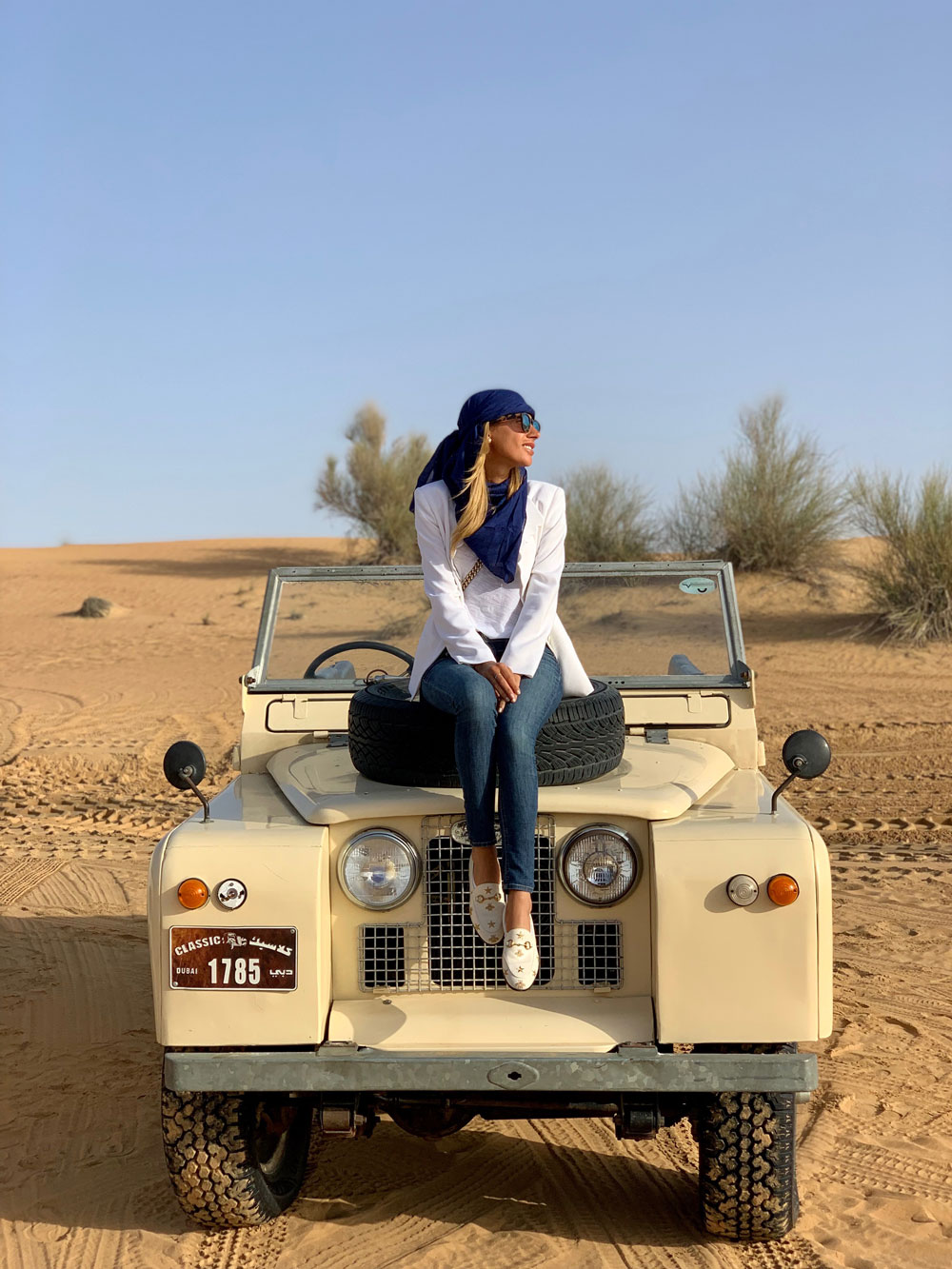 safari, dessert, dubai, travel