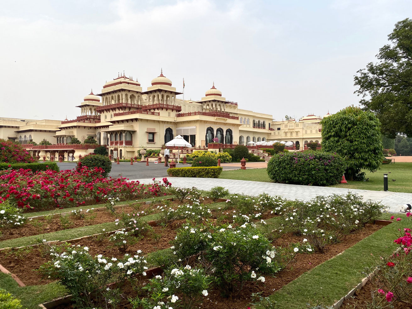 rambagh, palace, india, jaipur