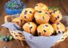 muffin, blueberry, gluten free, dessert, breakfast, muffins, paleo